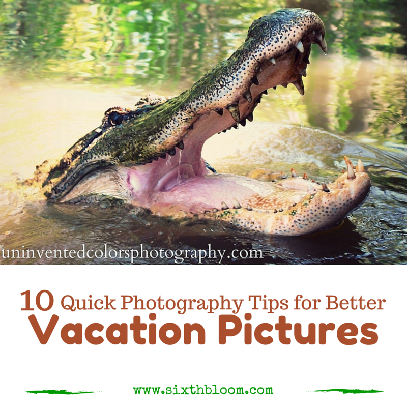 10 Quick Photography Tips for better Vacation Pictures