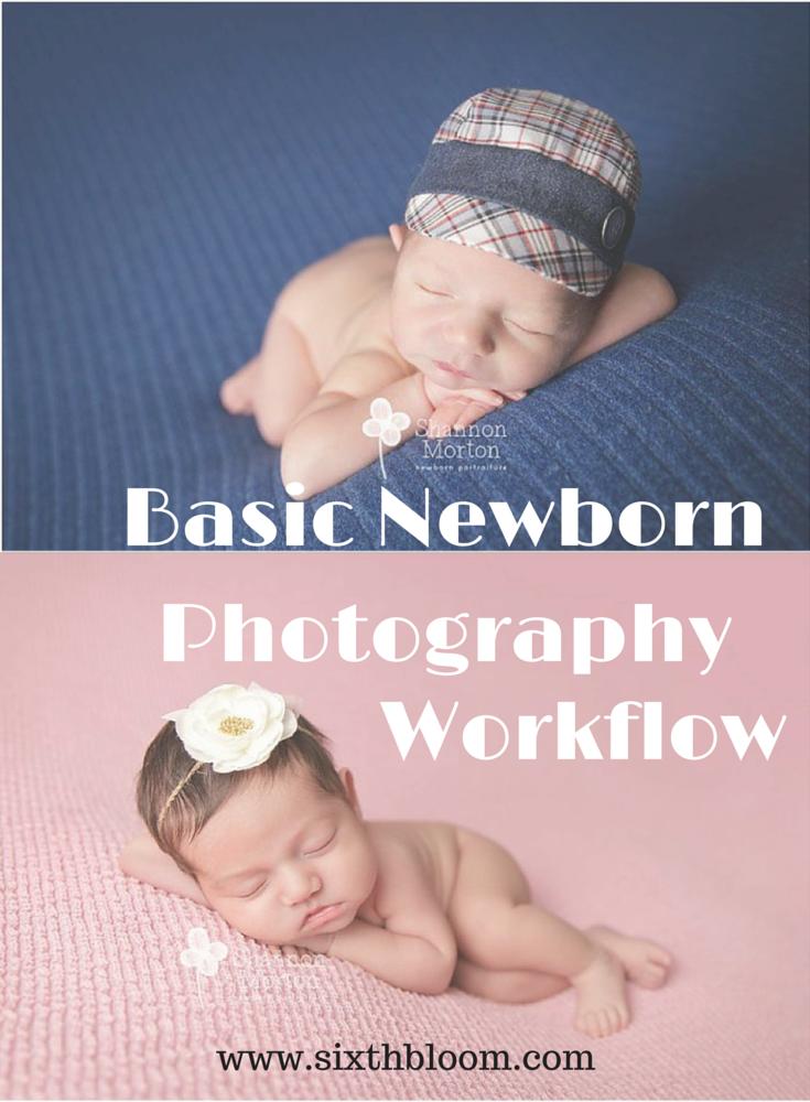 Basic Newborn Photography Workflow Tips