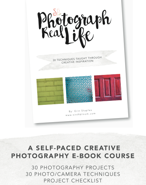 photography project book