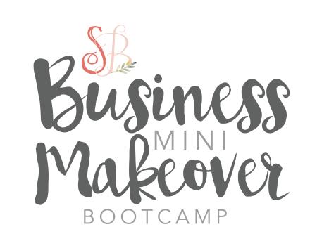 Business Mini Boot camp e course