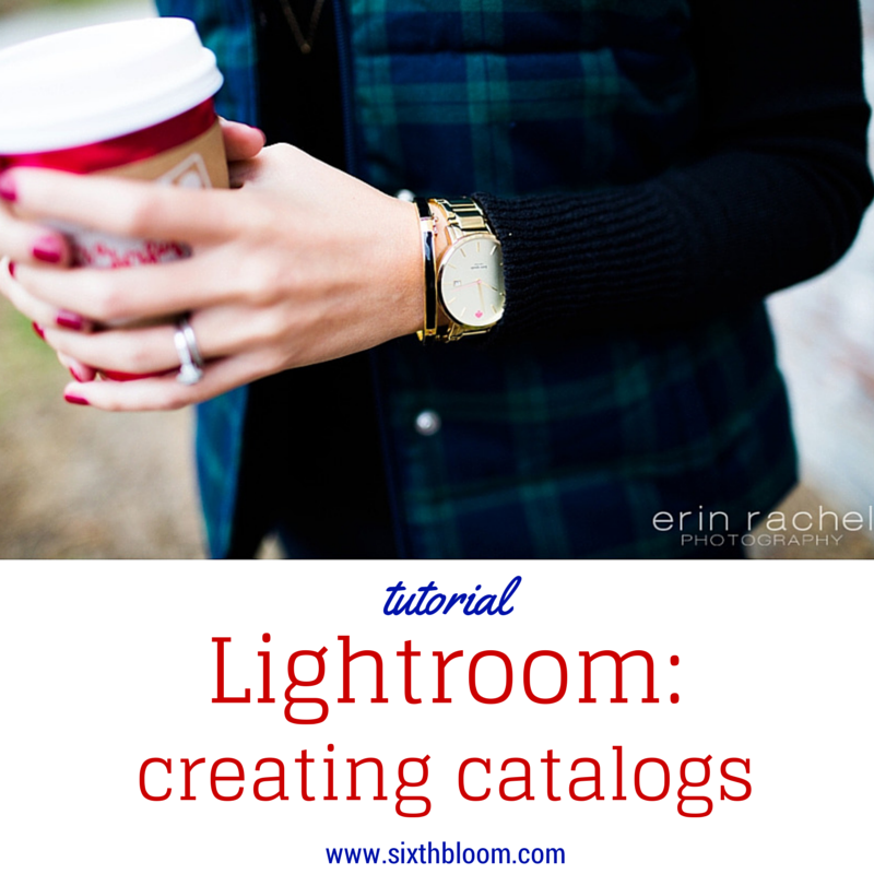 Lightroom Tutorial: Creating Catalogs