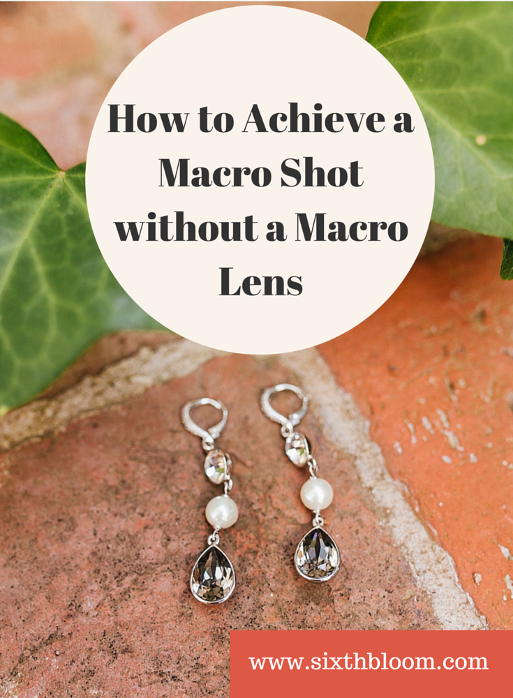 How to Achieve a Macro Shot without a Macro Lens