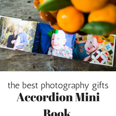 Accordion Minis | Best Photography Gifts