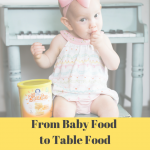 baby food to table food