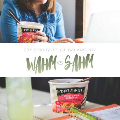 The Struggle of Balancing a WAHM vs SAHM