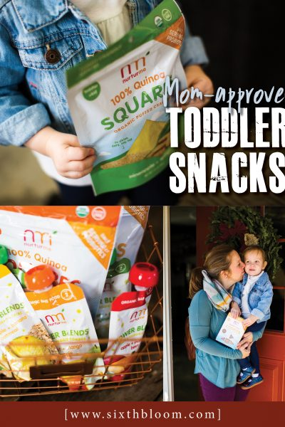 NurturMe Snacks for Toddlers