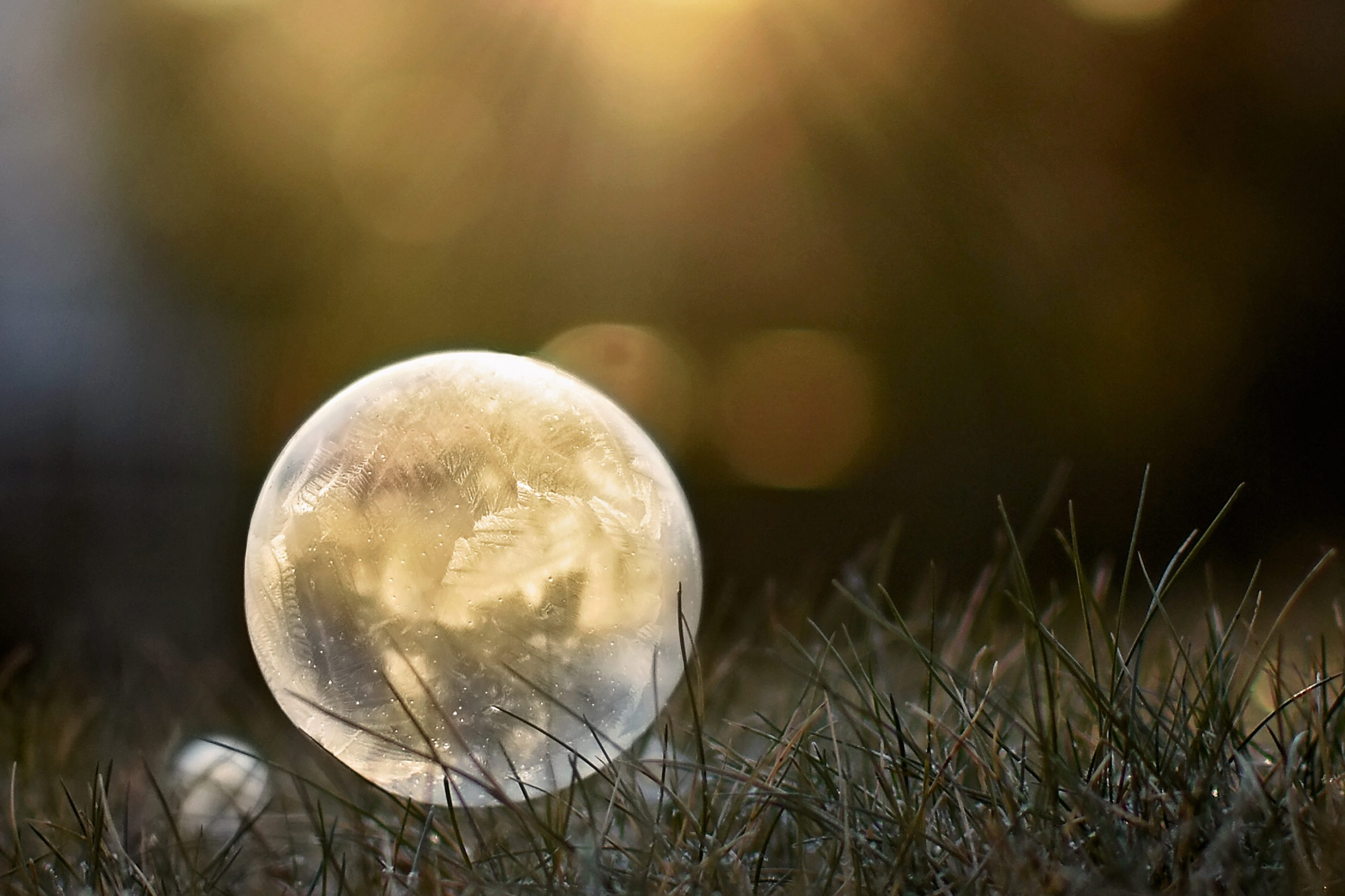 How to take Pictures of Frozen Bubbles