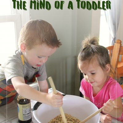 GROWING & FEEDING THE MIND OF A TODDLER