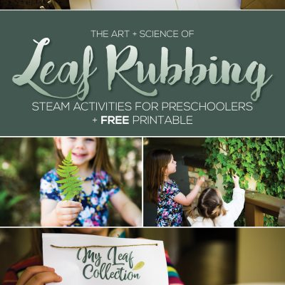 Leaf Rubbing Science & Art – Preschool STEAM