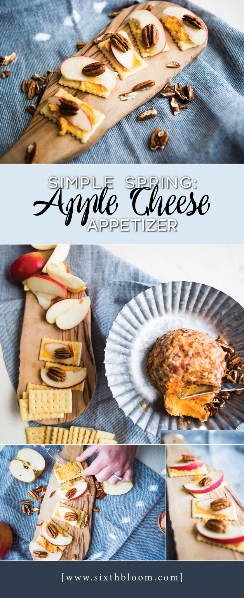 apple cheese appetizer