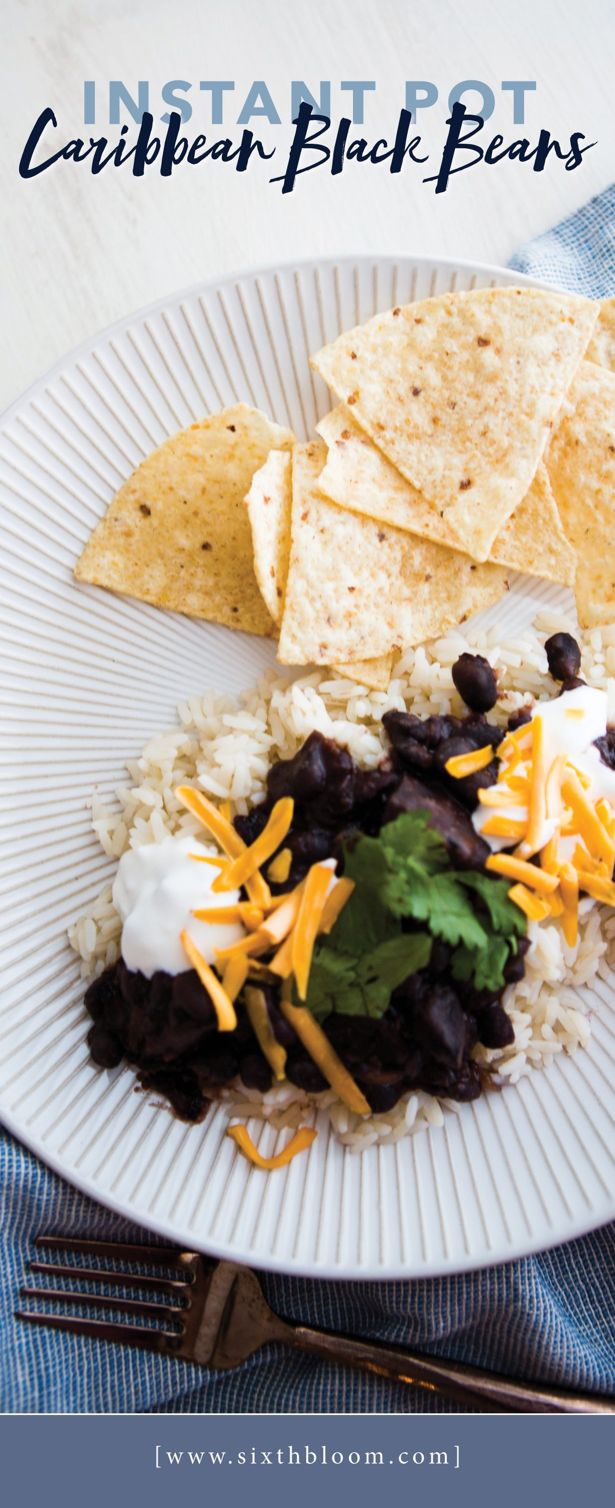 Instant Pot Caribbean Black Bean Recipe