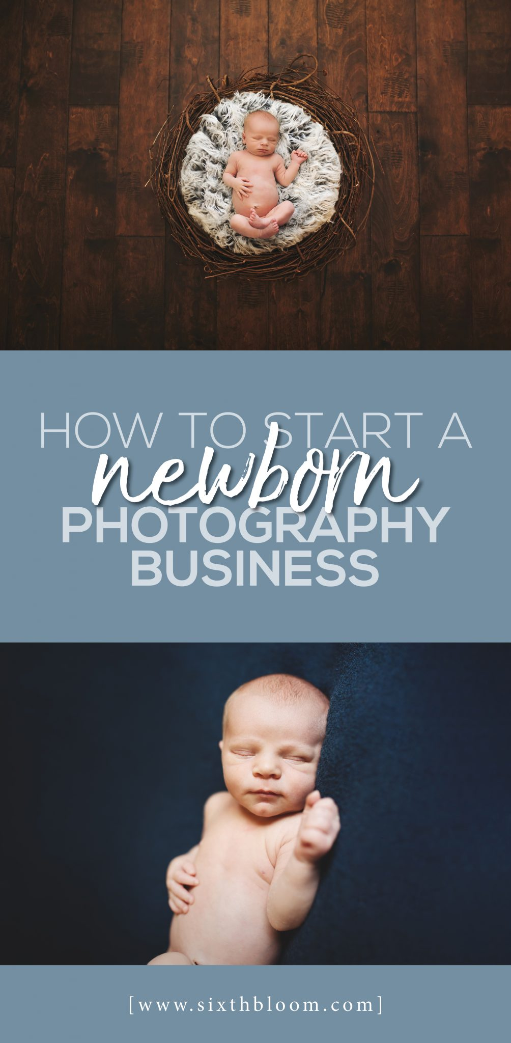 how to start a newborn photography business