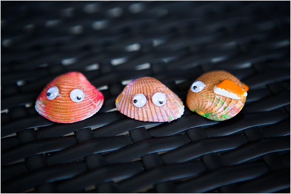 how to paint seashells