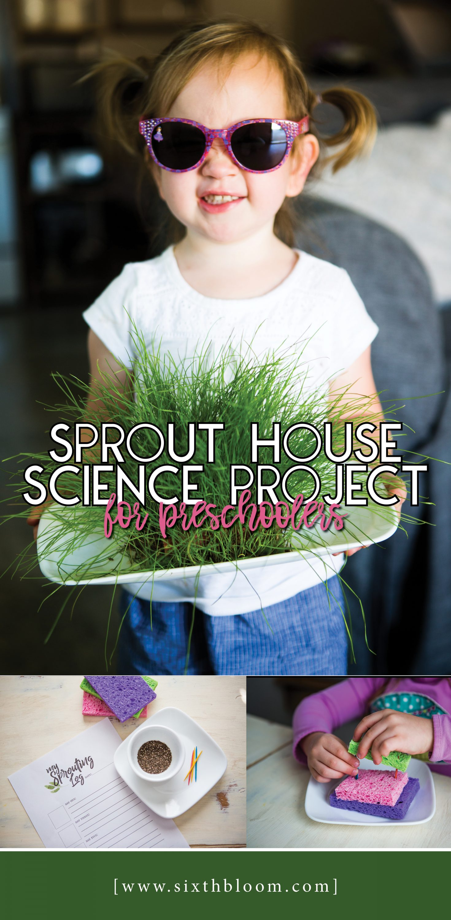 Sprout House Science Project for Preschoolers