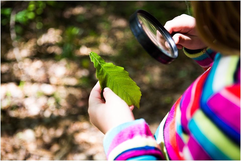kids nature scavenger hunt