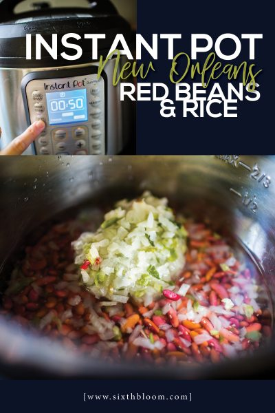 Instant Pot New Orleans Red Beans and Rice