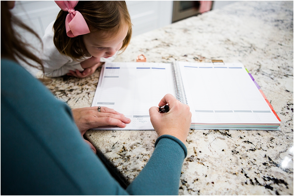plum paper large planner
