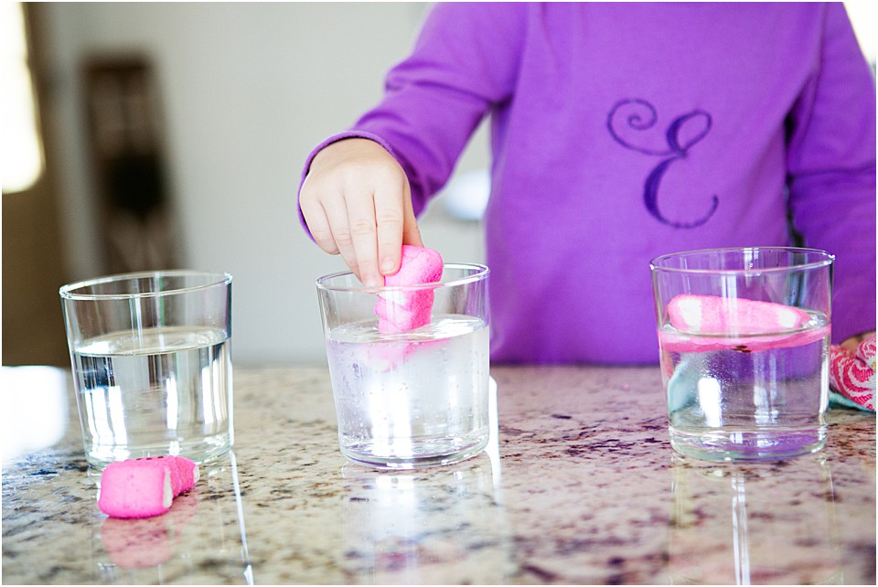 Easy Peeps Science Experiment