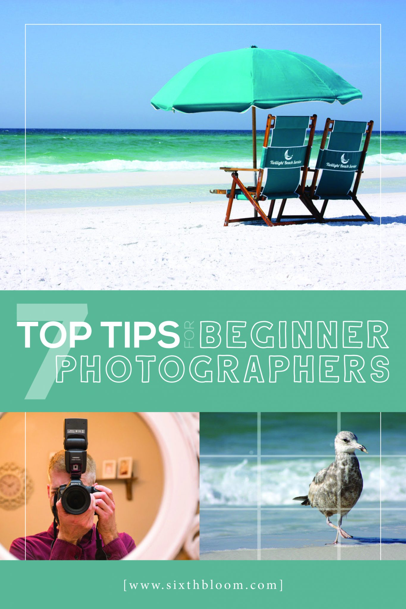 beginner photography tips and tricks
