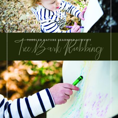 Toddler Nature Learning Activity – Tree Bark Rubbing