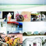 Seaside Florida things to do