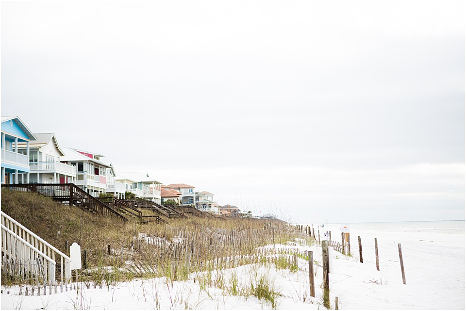 rental homes in seaside florida on the beach