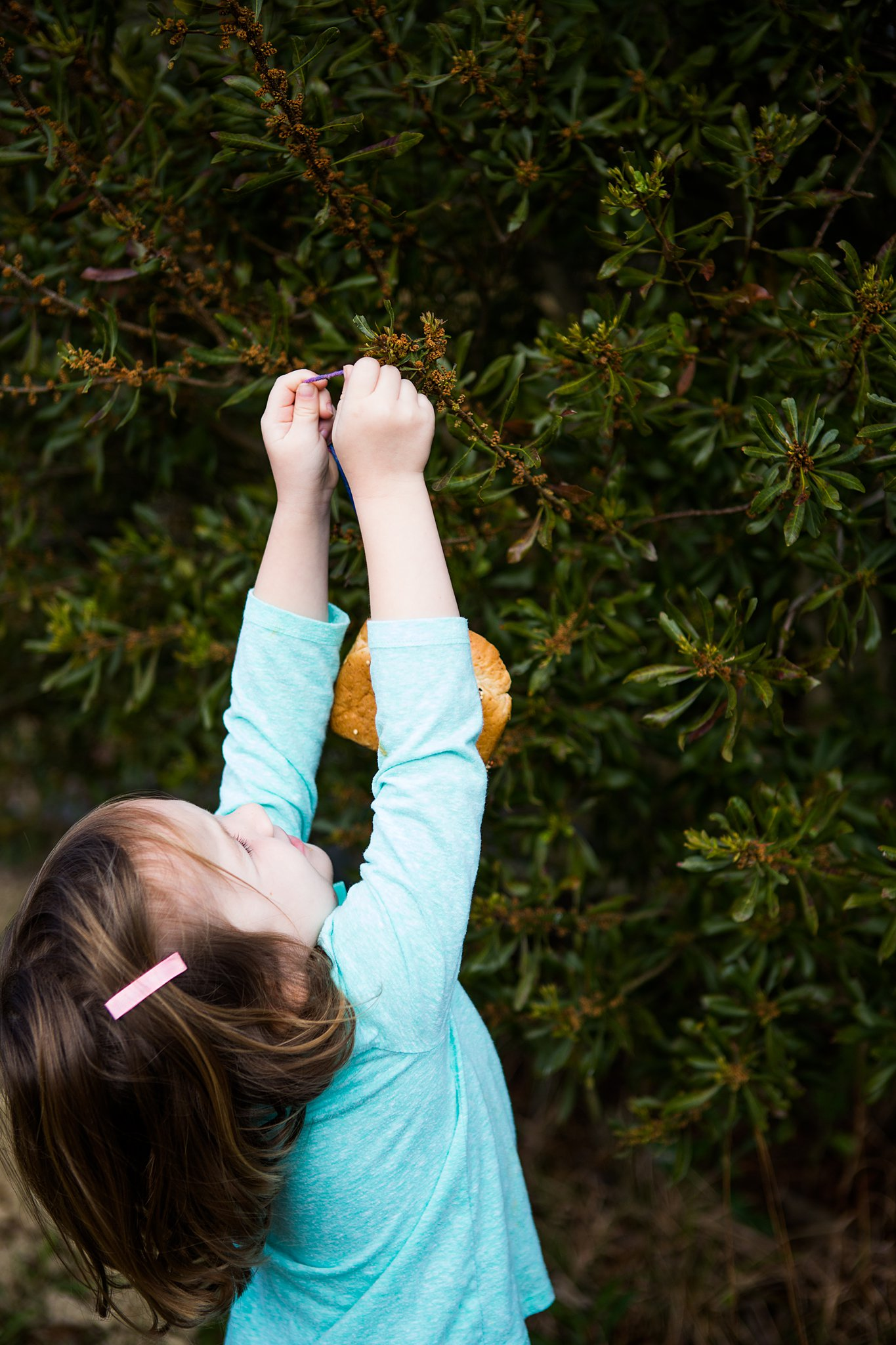 preschooler hanging homemade bird feeder on tree