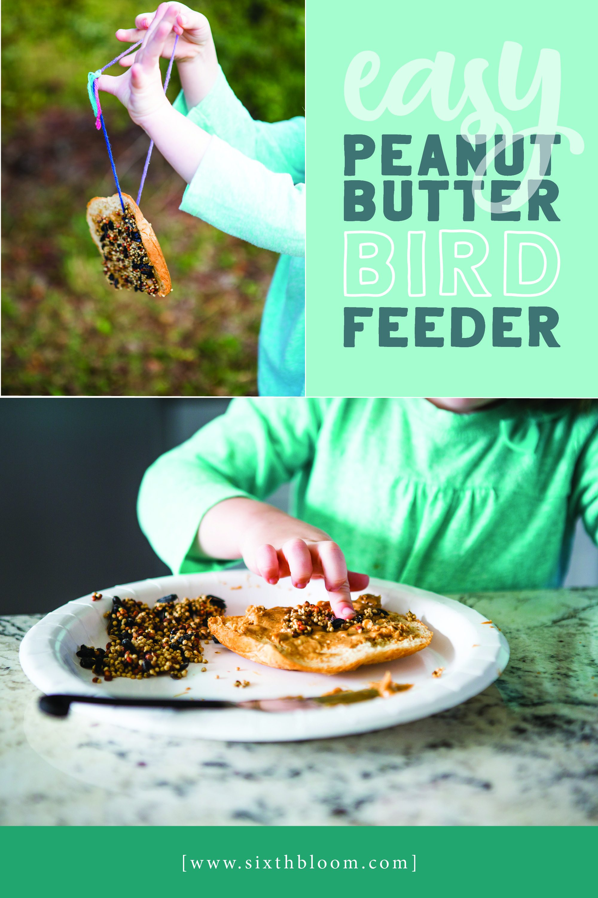 Peanut butter bird feeder for kids to make