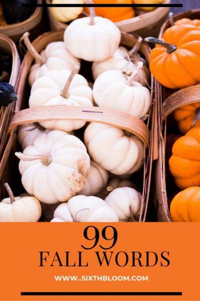 fall pumpkins in a basket