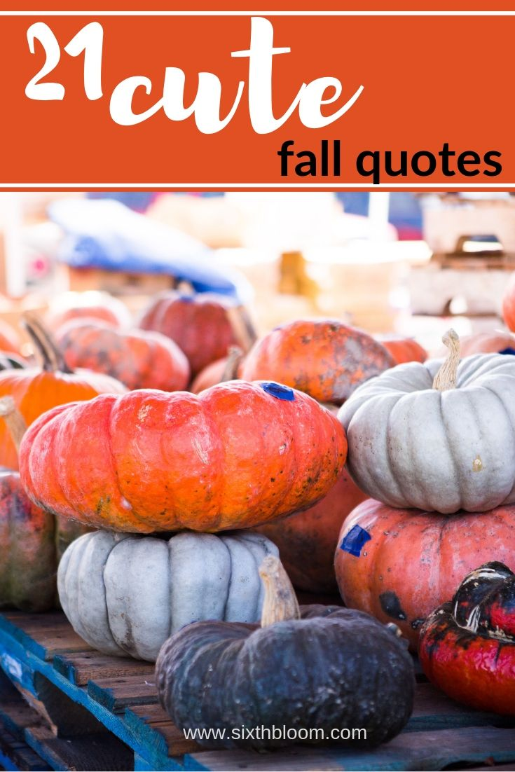 fall quotes, fall quotes for signs, Thanksgiving words, Fall Words
