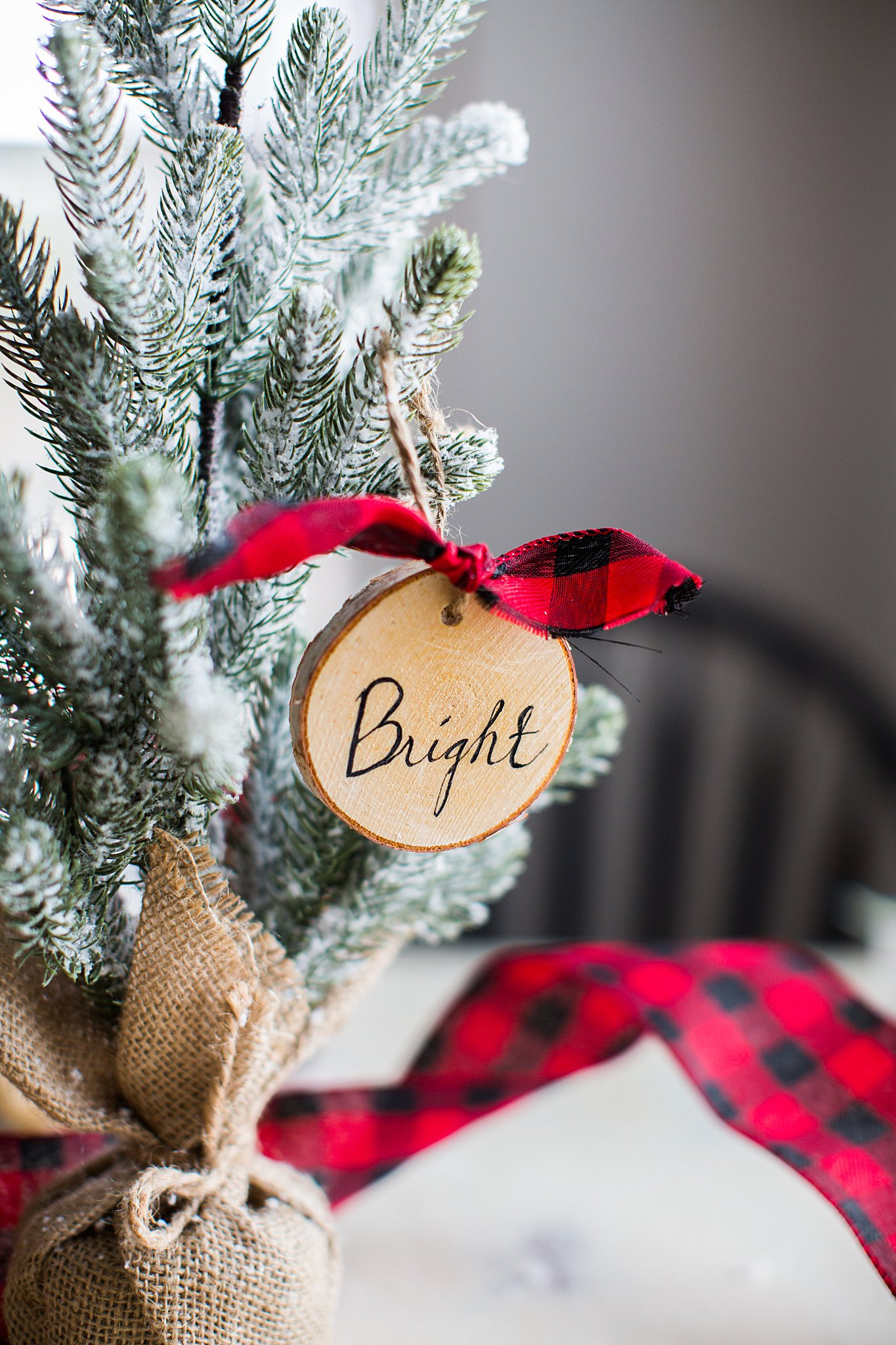DIY Christmas gifts to save money