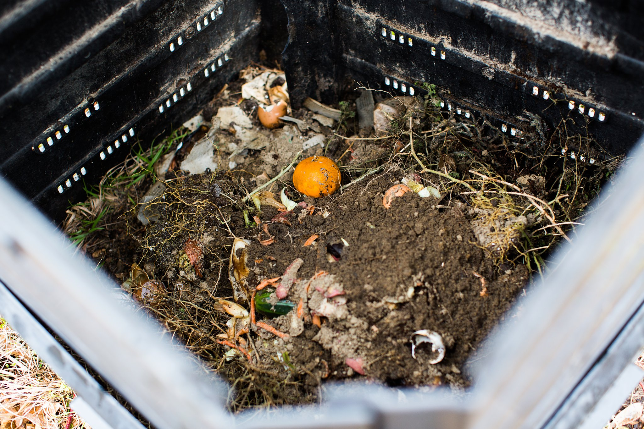 composting for a garden