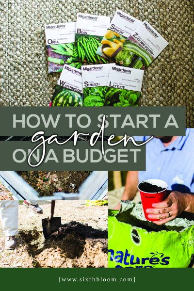 tips on how to start a garden on a budget