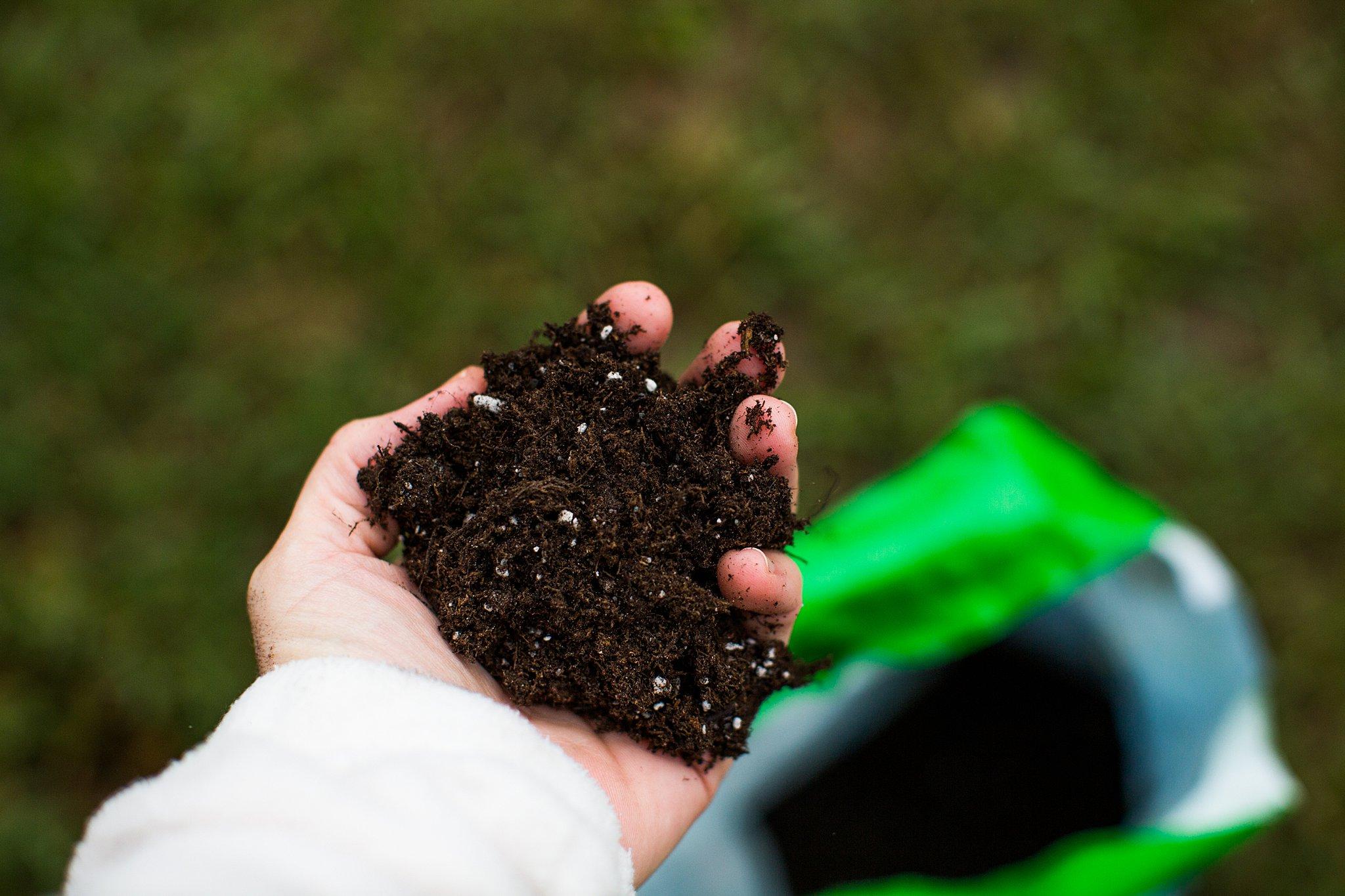 good rich soil for a vegetable garden